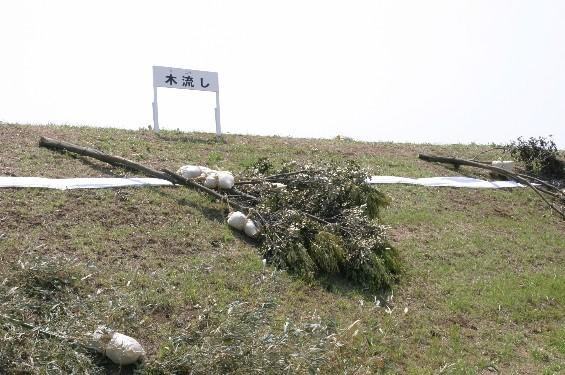 洗掘防止【木流し工】